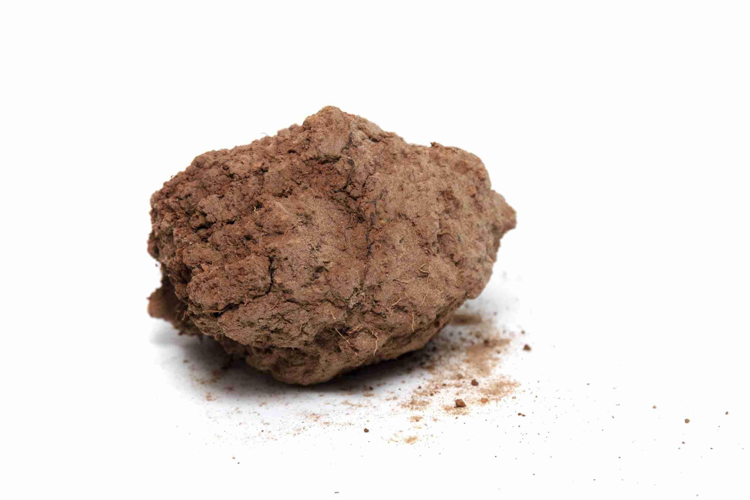 untreated dirt